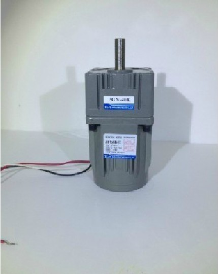 HOT SALE] New TLM Gear Motor / gearbox motor in 220 VAC out