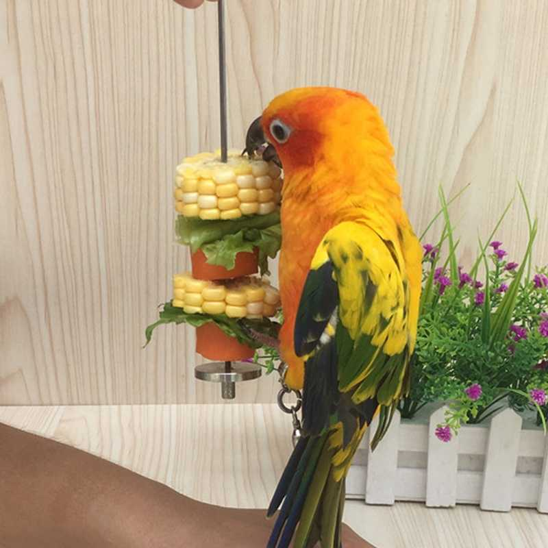 1Pc Pet Parrots Birds Food Holder Support Stainless Steel Fruit Spear Thread Meat Skewer holding food Feeder