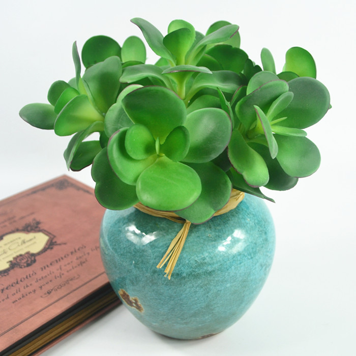 Wholesale 200pcs Artificial Succulent Plant Desert Rose Plastic Flower Green Plant Table Decoration Branches Free Shipping
