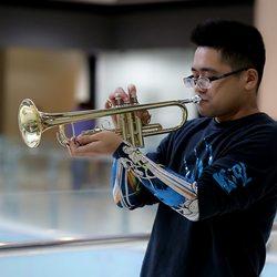 Ammoon Trompete Bb B Flache Messing Gold-gemalt Exquisite Durable Musical Instrument mit Mundstück Handschuhe Strap Fall