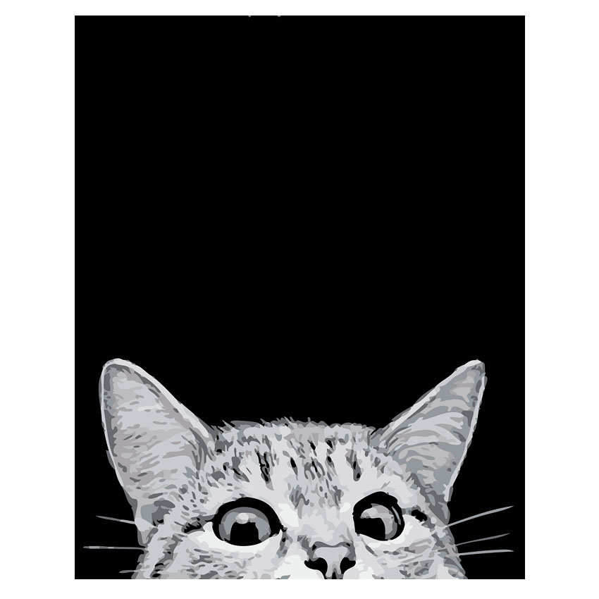 RIHE Cute Cat Arcylic Painting By Numbers On Canvas Framed Abstract Animal Wall Pictures Art For Living Room Home Decoration