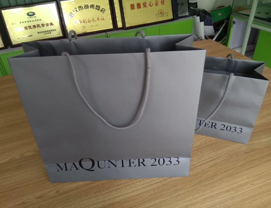 Customized  High Quality  Fashionable Colorful  Promotion Paper Bag