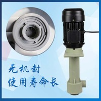FSY32 6 Can Idling Upright Acidproof Alkali Pump 370W Small Engineering Chemical Submerged Pump
