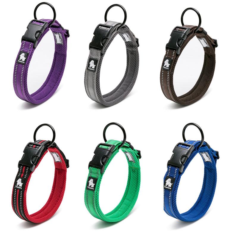Collar para perro Nylon con acolchado de malla reflectante 2