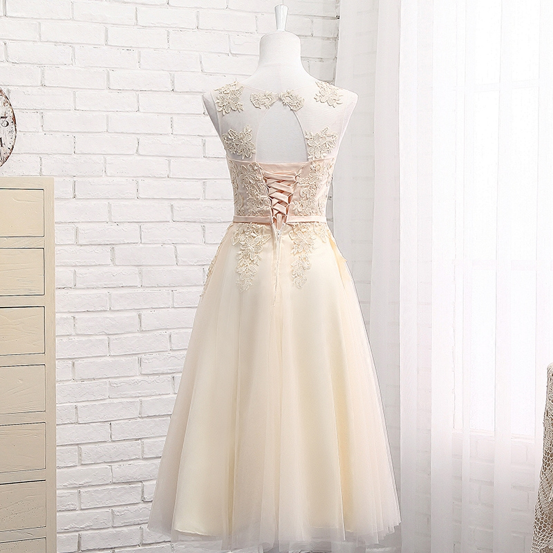 Dusty Pink Bridesmaid Dresses Long Sleeveless Lace Appliques cheap ...
