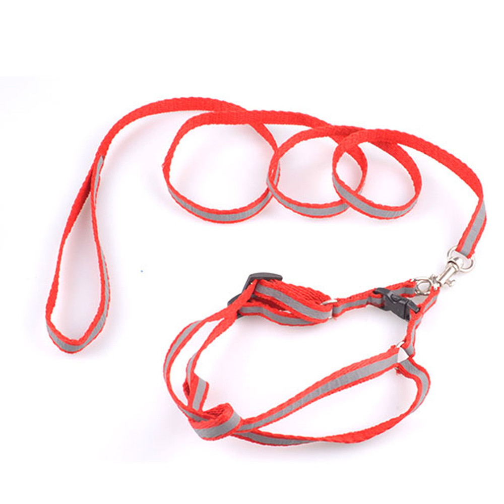 Florescent Light Pets Harnesses And Leahes Sets Lovely Dogs Safe Harness Dogs Casual Training Lead Belt Hot Sale Puppy Product