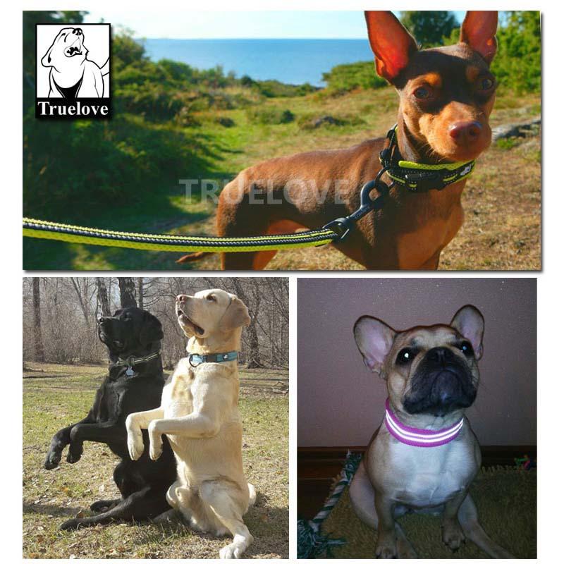 Collares de perro ajustables de nylon de Truelove Acolchado - Productos animales - foto 6