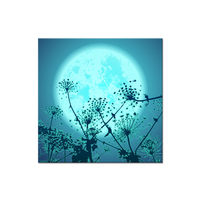 New Design Full Diamond Painting Moon With Dandelion Noctilucence On The Sky Diamont Paintings Wall Art