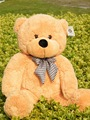 Christmas gifts! 80cm Big size Teddy Bear Skin coat  toys un-stuffed dolls for baby birthday gifts (3 colors)