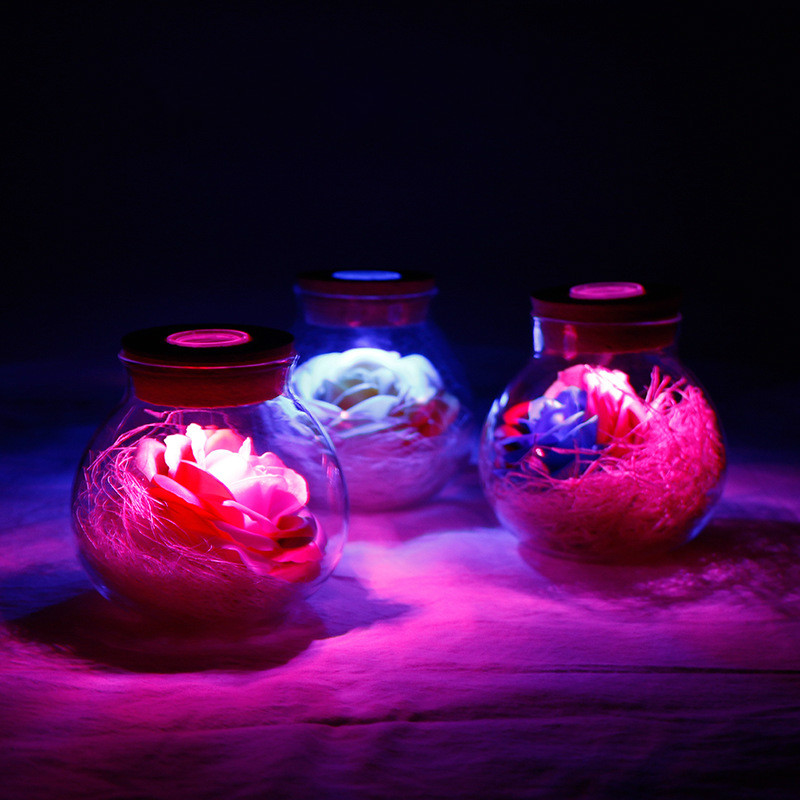 LED Lamp RGB Dimmer Flower Night Light Glass Bottle Creative Romantic Rose Bulb Gift For Wedding Valentine's Day New Year Decor