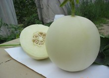 (Mix minimum order $5)1 original pack Muskmelon Seed 20pcs Delicious Sweet Fruit Seed White Organic Green Nutrient free shipping