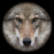 2017diy painting Home Decor DIY Diamond painting moon Wolf 3D cross stitch diamond pattern,mosaic diamond embroidery home decor