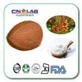 100% Natural Coconut Powder Food Flavoring