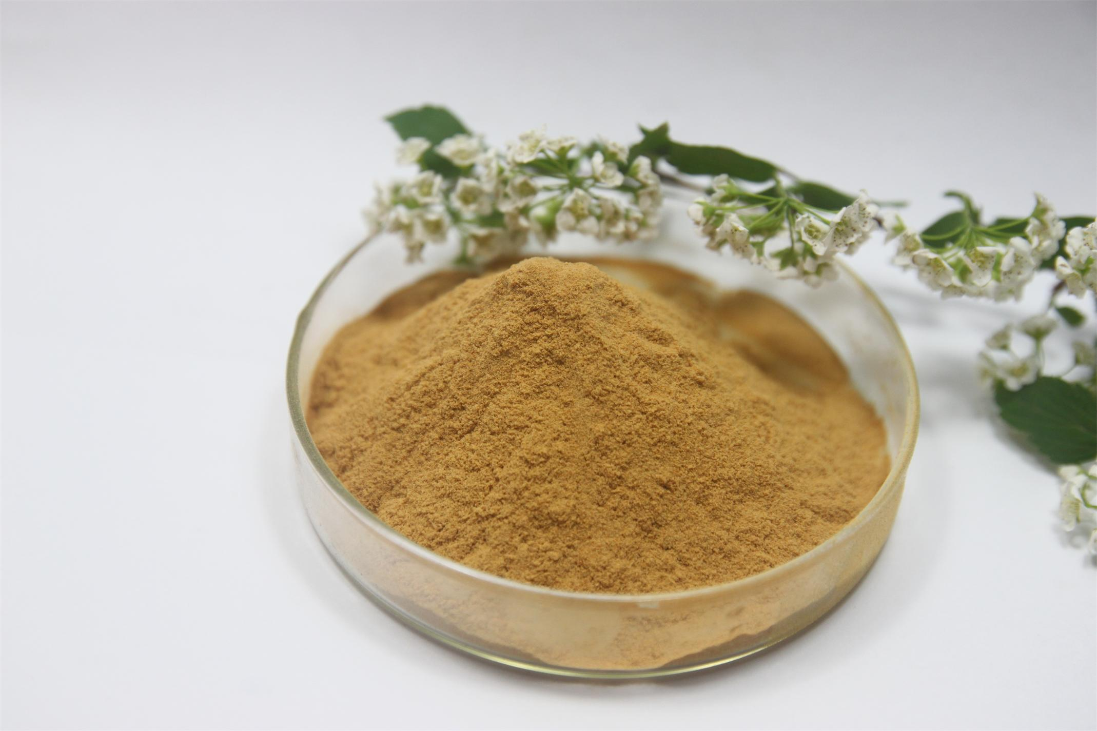 Pure natural wild Polygonum multiflorum Fo ti root Extract powder Energy Anti Aging Gray font b