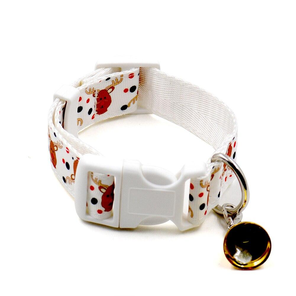 collier pour chien cora