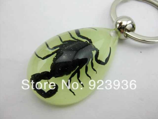 Chinese Real Drop Insect Keychain Black Scorpion Glow in the Dark