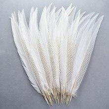 Натуральные серебряные перья из хвоста фазана 10-80 см белые перья фазана для поделок серебряные Куриные перья, пух Плюмы
