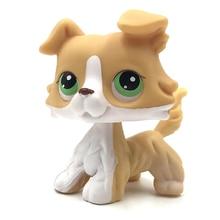 real rare Animal font b pet b font shop lps toys collie 272 yellow white dog