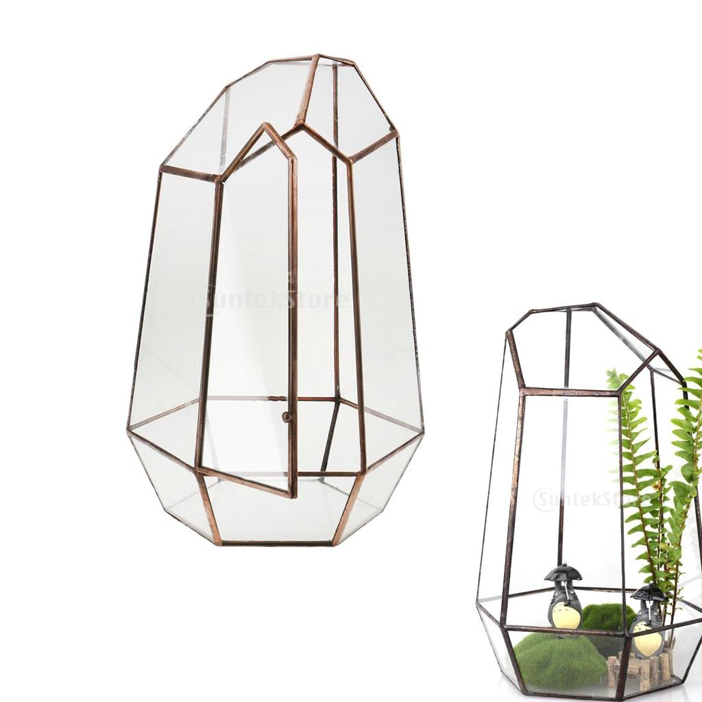 19cm Height Irregular Glass Geometric Terrarium Box Tabletop Succulent Plant Planter Flower Moss Fern Pot
