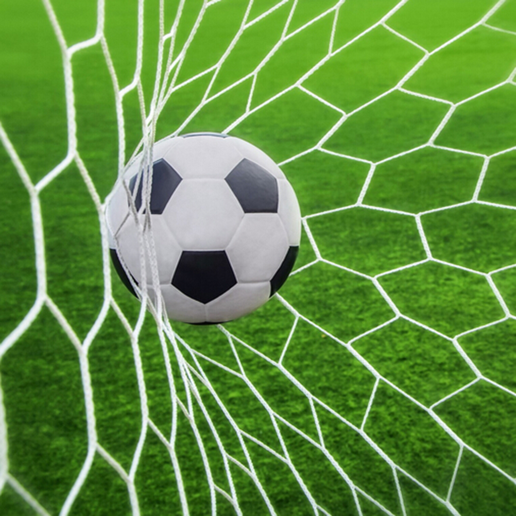 24x8ft Professional Football Goal Nets Soccer Goal Post ...
