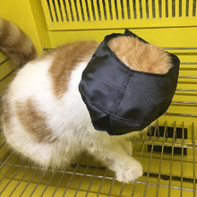 Pet Products For Cats Lined Nylon Cat Muzzles Cat Travel Tool Travel Bath