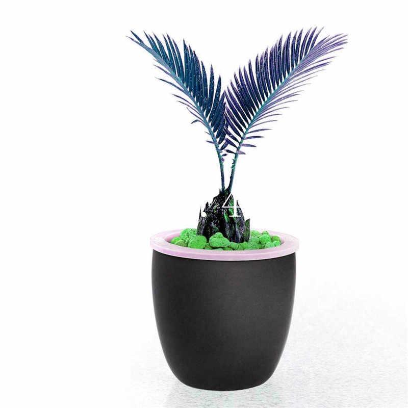 10 cái/túi Màu Xanh Cycas cây cảnh, Sago Palm Tree nhà máy, Cycas Cây cây cảnh, vừa chớm nở tỷ lệ 97% rare chậu cây đối với trang chủ vườn