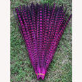 Wholesale 10pcs Natural Muti-color Pheasant Feathers 30-35cm DIY Handwork Feather Decoration For Stage Party Props