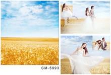 Thin Vinyl Cloth Photography Camera Background Golden Wheat Field Cloudy Blue Sky Wedding Photo Shoots Backdrop for Photo Studio