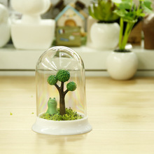 Manufacturers, wholesale creative mini potted plant paradise Micro Landscape customized promotional advertising meaty pot