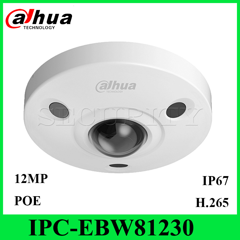 Dahua IPC-EBW81230 12MP Panoramic Network IR Fisheye IP Camera IP67 IK10 PoE Audio and Alarm with Express Ship without logo