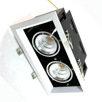 Dimbare 2X10 W Dubbele COB LED Downlight allemaal met power Driver 20 W COB LED Down Licht korting kroonluchter Plafond