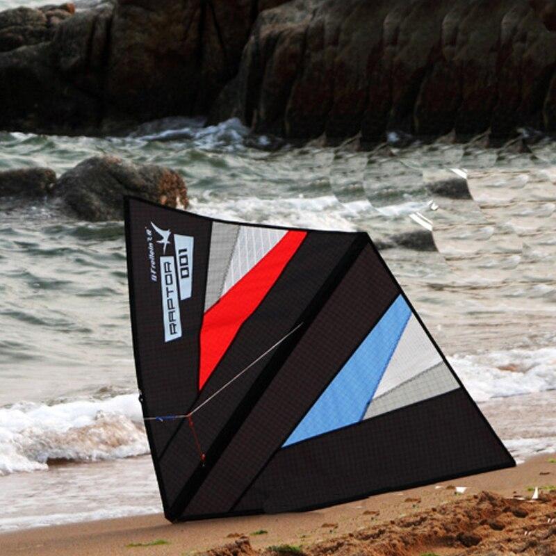 Cerf-volant professionnel de ligne unique de cerf-volant de cascade de vent zéro pour des enfants d'adultes avec la ligne de vol de cerf-volant de la queue 50 M de 5 M