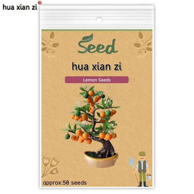 HUA XIAN ZI Lemon Tree Seeds Citrus Limon Tree Seeds Fruit Bonsai Plant DIY Home Garden Edible Green Lemon 50 seeds/bag