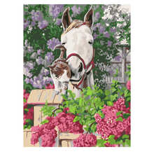 RIHE Horse And Cat Painting By Numbers Animal Oil On Canvas Hand Painted Cuadros Decoracion Acrylic Paint Home Decor
