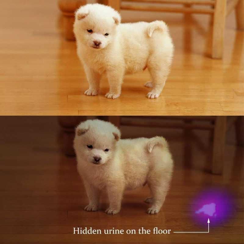 Детектор мочи домашних животных свет ультрафиолетовый фонарик собака кошка мочи ковер детектор супер яркий 51 Светодиодный УФ фонарь для домашних животных пятен скорпион