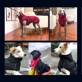 Waterproof Large Dog Jacket  3