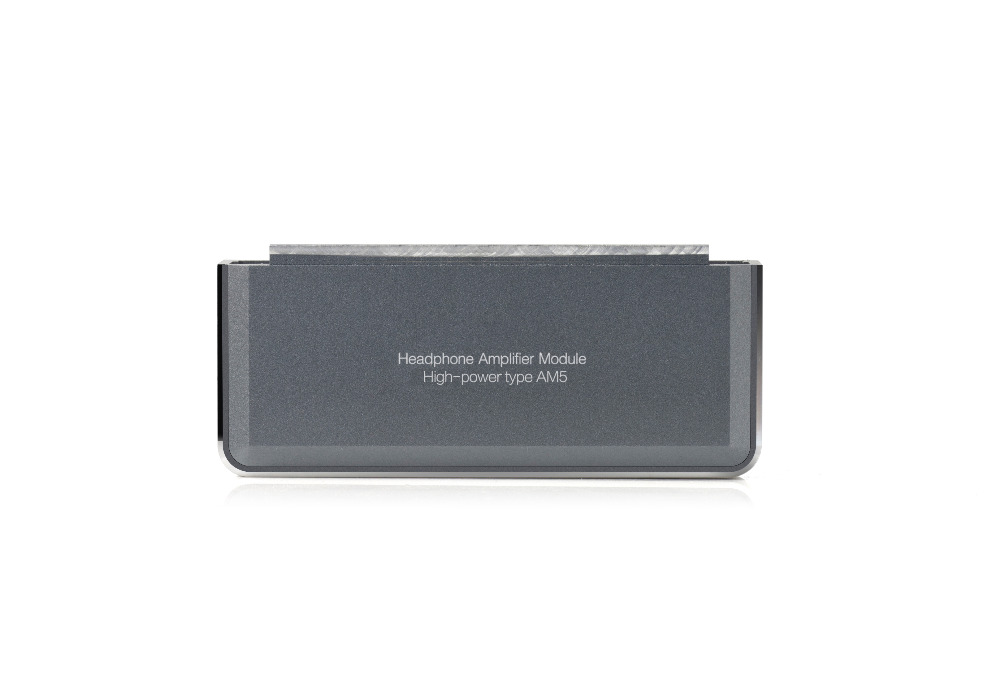 все цены на FiiO High-power Amplifier Module AM5 for X7 MKII/X7