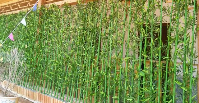 freeshipping 180cm Artificial bamboo artificial tree partition balcony partition screen decoration bamboo