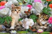 DIY Diamond Painting Cross Stitch Flowers And Cats Needlework Home Decor Full Rhinestone Mosaic 5D Diamond