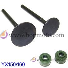 YinXiang 150CC YX160 Retentores de Válvula e Válvula set Kit Válvula Da Cabeça Do Cilindro Do Motor peças de reposição