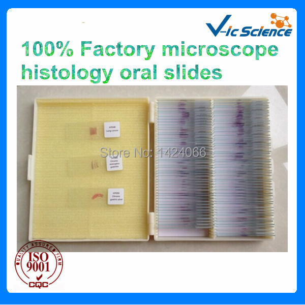 100% Factory microscope histology oral slides america market 100 pieces mixed botany zoology histology microscope prepared slides