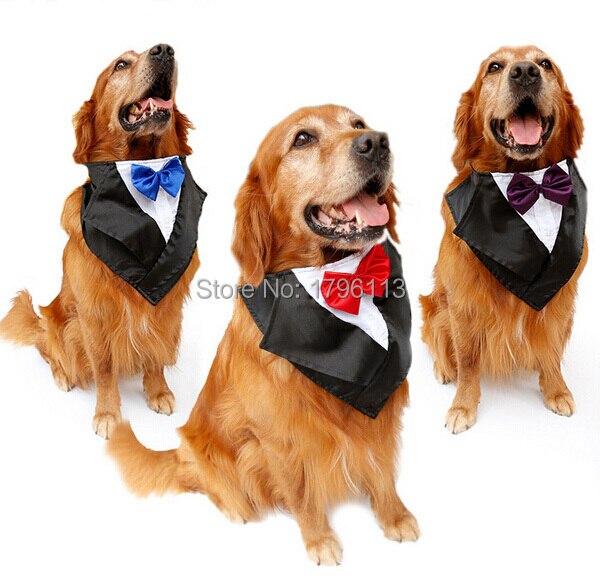Comprar 2015 nueva gran perro de moda for Accesorios para mascotas