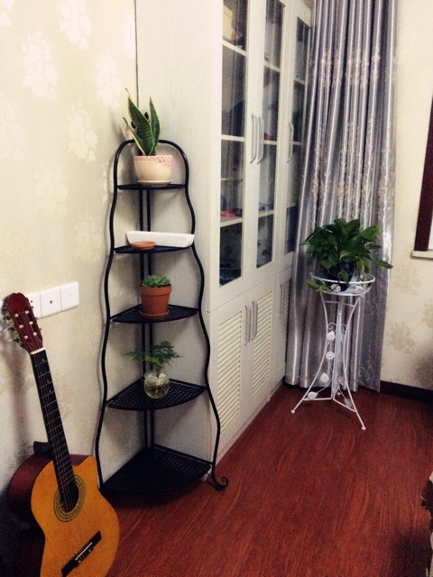 Nordic Ikea Iron Bathroom Shelf Floor Turn Corner Flower Stand Tripod Bookshelf Shipping