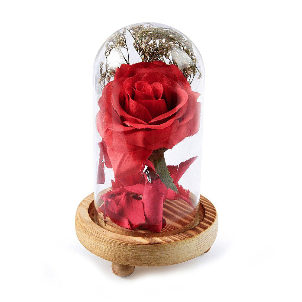 Birthday Gift Beauty and the Beast Red Rose w/ Fallen Petals in a Glass Dome on a Wooden Base for New year Valentine's Gifts