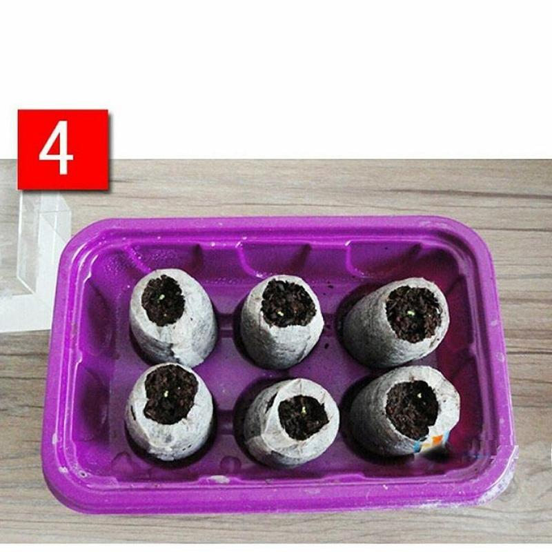 10/20/50Pcs Jiffy Peat Pellets Seed Starting Plugs Seeds Starter Pallet Seedling Soil Block Pro Garden Tools Easy To Use 30mm Pakistan