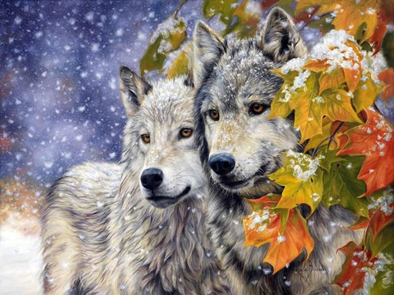 Diamond Nakış Dekor 3DIY Wolf Tam 100% ərazidə Qatran Aləti - İncəsənət, sənətkarlıq və tikiş - Fotoqrafiya 1
