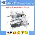 Free Shippiing 5PCS New Mini Micro Water Priming Gear Pump  RS-360SH Spray Motor