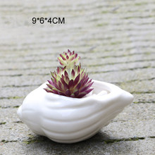 Mini White Small Flower Succulent Pot 6pcs
