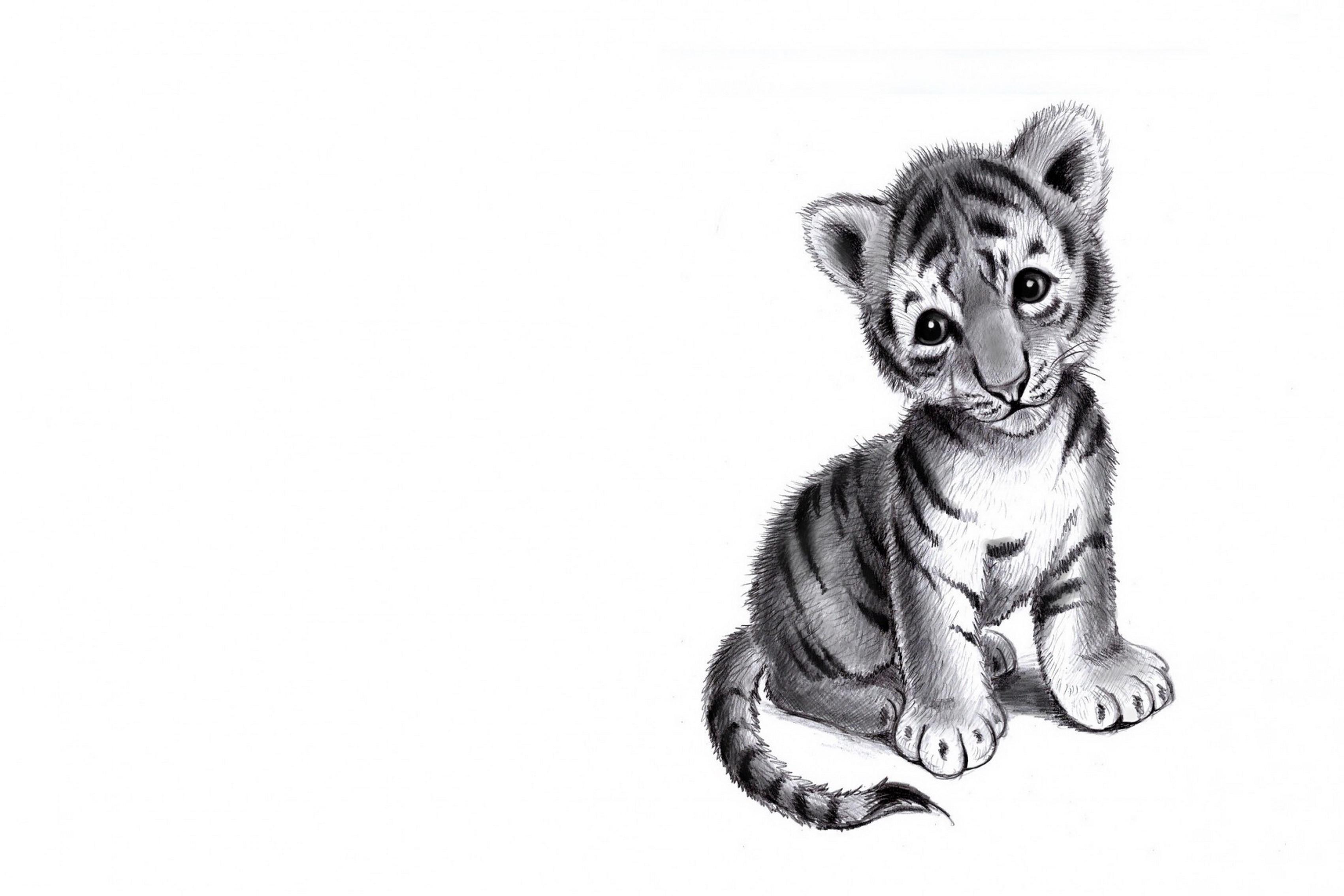 Baby tiger pencil drawing sad mood Living room home art decor wood ...