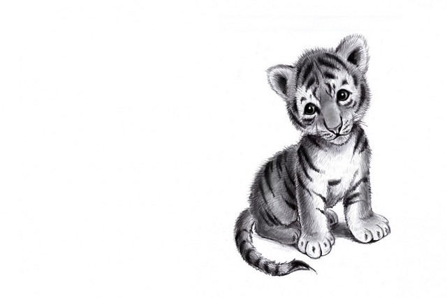 Baby tiger pencil drawing sad mood living room home art decor wood frame fabric poster